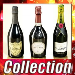 Champagne Bottles Collection ( 319.05KB jpg by VKModels )