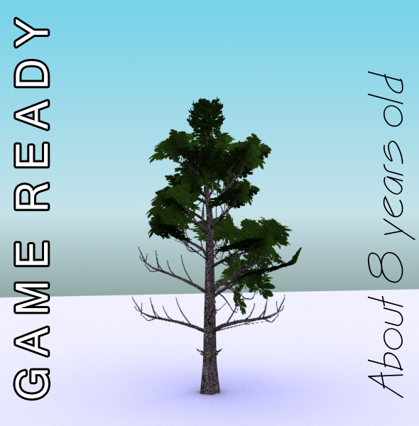gameready low poly tree pack 3 (horse-chestnut) 3d model 3ds max fbx c4d x ma mb texture obj 150948