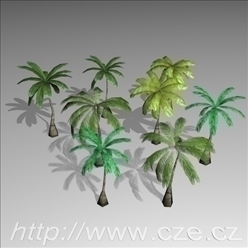 palm trees 3d modelo 3ds max x obj 97662