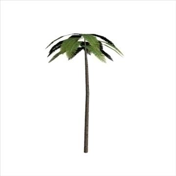 palm2 3d model 3ds 110719