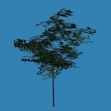tree 3d model 3ds 110333